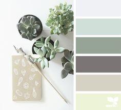 { succulent hues } image via: @papermountainco