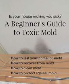 Have you experienced a mold exposure? Are you wondering if your home, school or office is making you sick? Learn more about health effects of toxic mold.