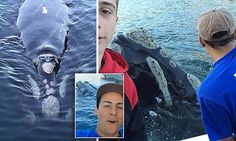 Fishermen take selfies with a whale who approached them for help. There's still good people in the world.