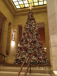 The Christmas Tree in the lobby of the Four Seasons Hotel in New York City in November 2011.  One day I will spend Christmas in New York. It's at the top of my bucket list. Such a magical place.