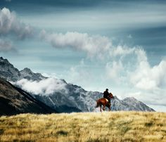 New Zealand. To ride a horse through New Zealand and pretend I'm in Lord of the Rings. Definitely a must.