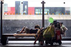 """12. September 2017: """"Schlafplatz"""" Mehr Bilder des Tages auf: http://www.nachrichten.at/nachrichten/fotogalerien/weihbolds_fotoblog/ (Bild: Weihbold)"""