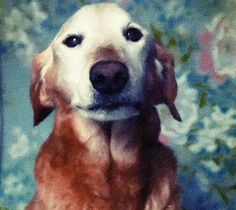 Hand Painted Oil on Canvas from your Photo - A Custom Hand-Painted Portrait of your Dog