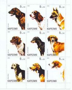 Dogs on Stamps - 9 Stamp Mint Sheet MNH - 11F-006