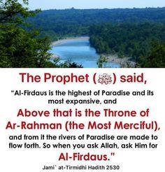 Hadith, Paradise, River, Sayings, Lyrics, Rivers, Quotations, Idioms, Quote
