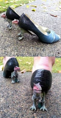 Funny pictures about Just A Pair Of T-Rex Heels. Oh, and cool pics about Just A Pair Of T-Rex Heels. Also, Just A Pair Of T-Rex Heels photos. Crazy Shoes, Me Too Shoes, Weird Shoes, Ugly Shoes, Vans Shoes, Shoes Sneakers, Shoes Heels, Mo S, Diy Fashion
