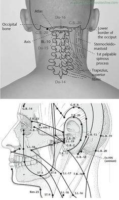 What is Acupuncture: Acupressure: Acupuncture Benefits: Acupuncture Treatment: Acupuncture for Anxiety: Acupuncture for Pain Relief: Acupuncture for Migraine: Acupuncture for Weight-loss: Acupuncture for Fertility: Herbal Medicine: Acupuncture For Weight Loss, Acupuncture Points, Acupressure Points, Alternative Health, Alternative Medicine, Acupuncture Benefits, Shiatsu, Holistic Practitioner, Acupressure Treatment