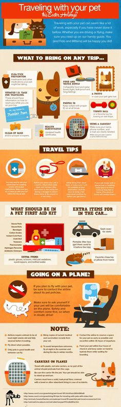 Traveling with your pets? Tips and tricks on how to best do this.