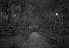 Insomniaque, ce photographe a capturé des clichés fascinants de Central Park déserté pendant la nuit   Buzzly