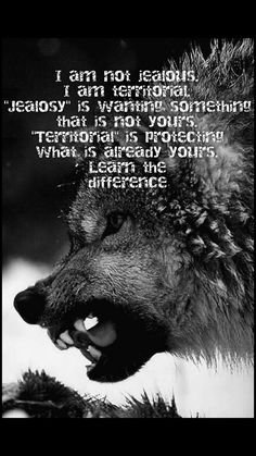 Werewolf Quotes, Witch Quotes, Werewolf Girl, Wolf Pack Quotes, Lone Wolf Quotes, Wisdom Quotes, True Quotes, Inspirational Poems About Life, Twisted Quotes