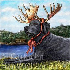 "Black Lab Art Moose Sighting 8x8 Framed Print by MaddieLabStudio, $35.00 ""I always make sure to bring a Moose with me on vacation. It helps me blend in with the locals."""
