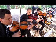 Quarteto de Cordas 2014 - ELOS VOICES (em Piracicaba) (+playlist)