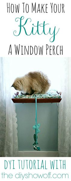 How to make your Kitty a Window Perch - click for details! | 23 Best DIY Pet Projects for Your Cats & Dogs | http://diyready.com/diy-pet-projects