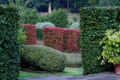 Images of completed projects undertaken by Jeremy Allen Garden Design Modern Landscape Design, Landscape Architecture Design, Traditional Landscape, Modern Landscaping, Allen Gardens, Boxwood Topiary, Topiaries, Garden Oasis, Amazing Gardens