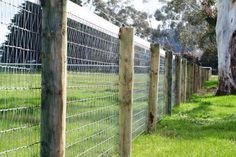 Diamond Mesh Horse Fencing is the worlds safest, strongest and most durable fencing for horses. When horse safety is of the utmost importance. Diy Horse Fencing, Horse Fence Panels, No Climb Horse Fence, Mesh Fencing, Diy Fence, Backyard Fences, Backyard Barn, Wood Fences, Backyard Farming