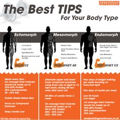 Easy to follow guide on body type and the training and supplements for you.  #Fitness #health #diet #trainingtips #bodybuilding #bodytypes #gym #exercise #supplements #workouts