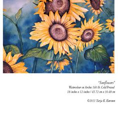 Sunflowers watercolour painting on Arches 140 lb Cold Pressed. ©Tarja K. Kuronen 2011.