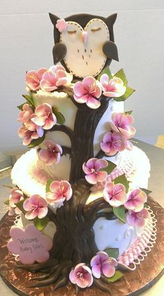 Amber, Can you help me to design her cake?  Some ideas will be pinned to your page.