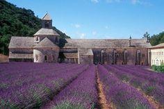 Eyes closed, deep breath and I feel the magic moment again. Abbaye de Sénanque, France