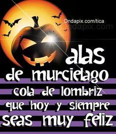 Happy Halloween Quotes, Feliz Halloween, Happy Birthday Images, Good Morning Good Night, Halloween Pictures, Romantic Love, Halloween Cosplay, Holidays And Events, Dog Mom
