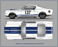 1966 Ford Shelby GT 350-R
