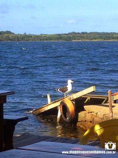Viagens que sonhamos: Costa da Lagoa, um paraíso quase escondido em Flor...