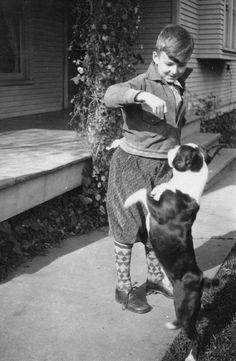 BOSTON TERRIER 1931