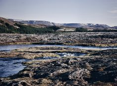 Heiðmörk, Heidmörk, Naherholungsgebiet Reykjavik, Nature nahe Reykjavik, spazieren gehen in Reykjavik, schönste Plätze in Reykjavik und Umgebung, Natur Reykjavik, Lifestyle Blog, Island Blog, Iceland Blog, Like A Riot