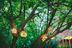 for the engagement at our backyard :)  12 Wedding Lighting Ideas to Make Your Jaw Drop - Project Wedding