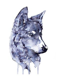 Gray Wolf 85 x 11 inch Ink Painting Print by EScheborIllustration