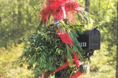 Wrap sheer ribbon loosely around a pine garland and drape the garland around the mailbox. Wire clusters of bright nandina berries to the top of the post, and finish