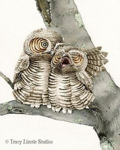 Good Night Owls  8x10 archival watercolor от TracyLizotteStudios