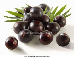 There are numerous healthy berries that would be a great addition to your diet. The acai berry is one of the healthiest berries you will ever find. Easy Weight Loss, Healthy Weight Loss, How To Lose Weight Fast, Reduce Weight, Losing Weight, Vitamine B17, Acai Benefits, Health Benefits, Health Tips
