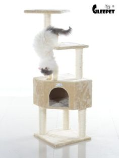 GleePet GP78480321 Cat Tree 48Inch Beige *** Want additional info? Click on the image.(This is an Amazon affiliate link and I receive a commission for the sales)