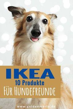 10 günstige IKEA-Produkte für den Hund zweckentfremdet Ikea Dog, Dog Hacks, Gaara, Yorkshire Terrier, Cavalier, Chihuahua, Dog Cat, Cats, Happy