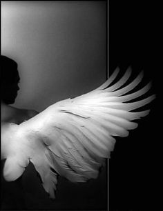 anjos de uma asas só.  Em 1929 o primeiro filme premiado com o Oscar    ASAS