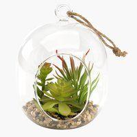 Για κρεμαστά φυτά VIGO Ø11xY15cm γυαλί