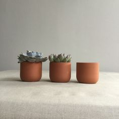 Small Terracotta Plant Pot for Succulents or Cactus by Sue Pryke – Oates & Co. Pottery Pots, Ceramic Pottery, Ceramic Pots, Clay Pots, Terracotta Plant Pots, Cactus Pot, Cement Crafts, Plastic Pots, Container Plants