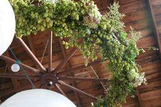 a wedding in the woods Wagon Wheel Light, Hops Vine, Wheat Wedding, Apple Baskets, Flower Farm, Wedding In The Woods, Growing Flowers, Ceiling Fan, Succulents