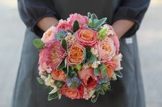 Round tight hand tied bridesmaids bouquet created from a mixture of coral, peach and blue flowers. Garden Roses, Nigella and Dahlias