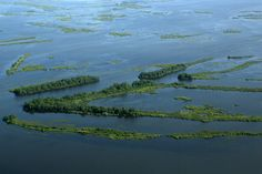 Climate Change Effects: Louisiana's Coast Is Sinking More Rapidly Than Anyone Thought, According to Study https://uk.news.yahoo.com/climate-change-effects-louisiana-apos-172009727.html?utm_campaign=crowdfire&utm_content=crowdfire&utm_medium=social&utm_source=pinterest