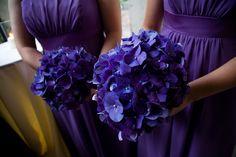 Purple hydrangeas as bridesmaid bouquets -- possibilities Purple Wedding, Spring Wedding, Wedding Flowers, Happy Wedding Day, Wedding Things, Wedding Stuff, Purple Tulips, Purple Hydrangeas, Wedding Renewal Vows