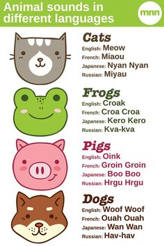 Animal sounds in different languages -- Interesting article that compares and describes sounds in several languages. Could be fun to discuss and find out more sounds in an ELL class or world language class!