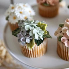 [Basic Course/ Buttercream Flowercakes] 케이크 작업에 이어 물레질까지.. 오늘의 행복을 워츠케 말해야 좋을꼬 😆 #cupcakes#문도방#흙#물레질#니가힐링이다 #세시봉#동주 #beanpasteflower #cakes#flowercakes#flowers #buttercreamflower #Koreanflowercakes #cakedecorating#cakedesign #buttercream#wilton #cakebunga#kue #weddingcakes#partycake#birthdaycakes #플라워케이크#버터플라워#이도케익#이도케이크#케이크 #フラワーケーキ#鲜花蛋糕 #웨딩케이크 Royal Icing Piping, Buttercream Flower Cake, Butter Icing, Take The Cake, Pavlova, Afternoon Tea, Food Art, Cake Decorating, Bakery
