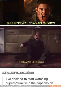 Hahaha subtitles!