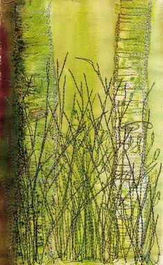 Birch Detail by Julie Shackson, via Flickr