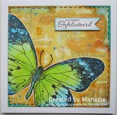 Indigoblu vlinder