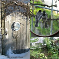 How to use mirrors in the garden with safety tips and creative ideas