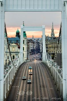 Kardos Ildikó=photo The Liberty Bridge Budapest City, Heart Of Europe, Kingdom Of Great Britain, Belle Villa, Central Europe, Most Beautiful Cities, Travel Abroad, Places To Travel, Around The Worlds
