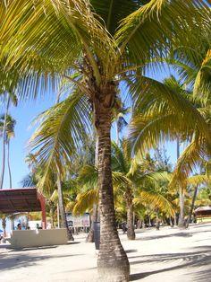 Luquillo beach, PR